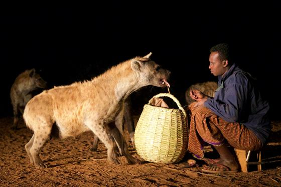 Hyena man of Harar Ethiopia sacrifice ancient ritual misunderstood creatures exquisitely crafted travel story