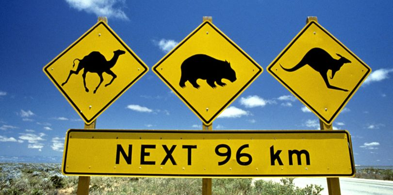 Wildlife signage in Australia
