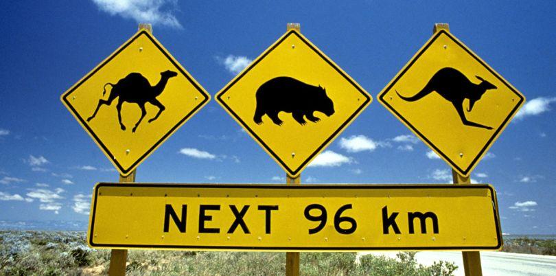Wildlife signage, Australia