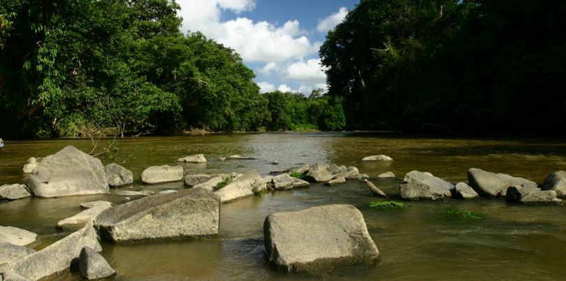 River with rocks in the Borneo jungle