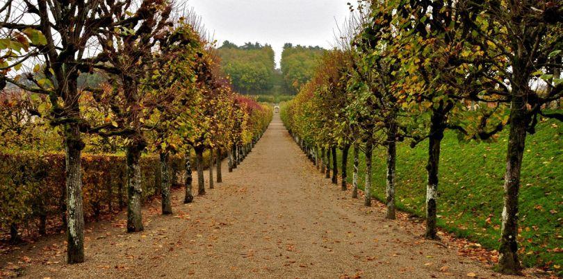 Le Chateau de Villandry Gardens, France