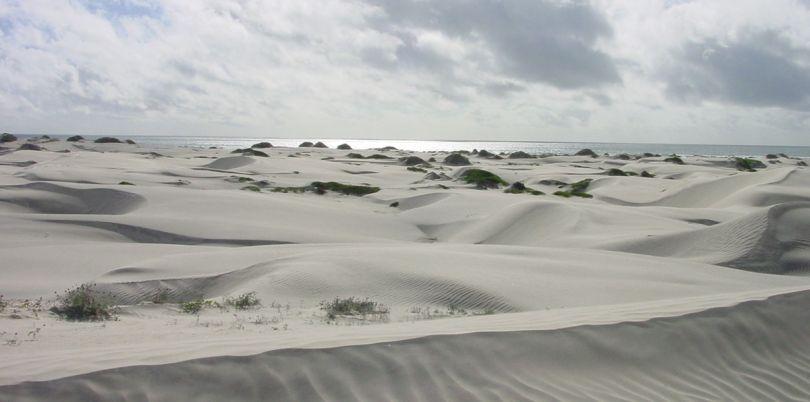 Baja dunes, Mexico