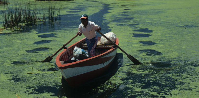 Man in boat on the Titicaca lake in Peru