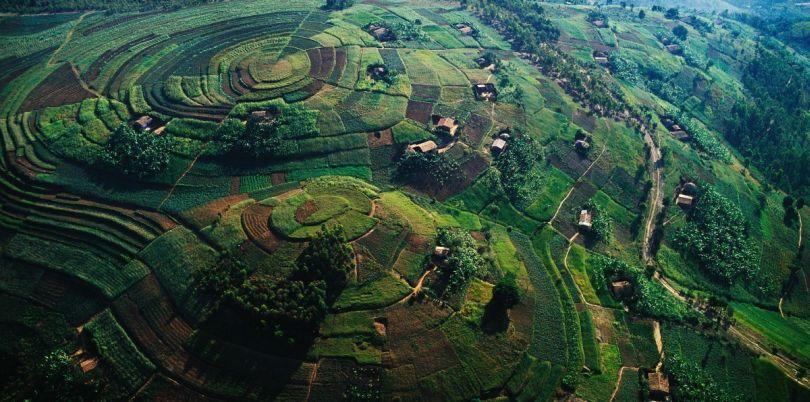 Aerial shot of the farming hills in Rwanda