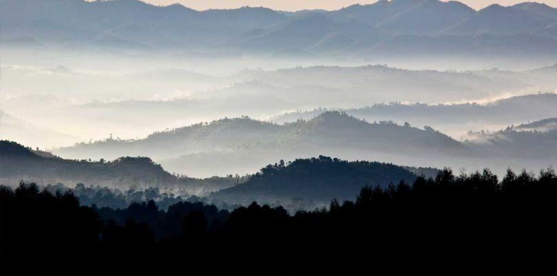 Landscape in the mist, Uganda